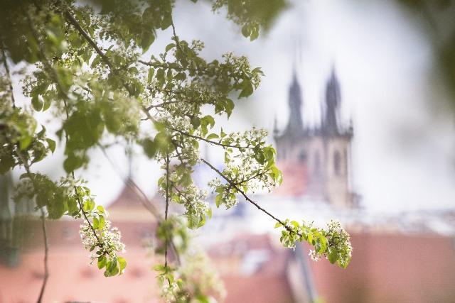 האביב של פראג כיום